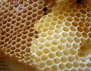 Bienenwachs_1_kl